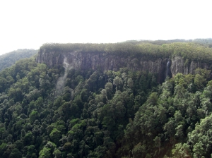 Springbrook Plateau Cliff Edge