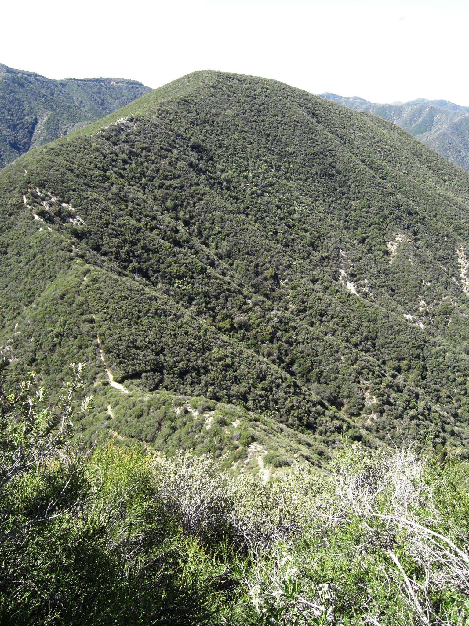 We love hiking ridgetop trails!