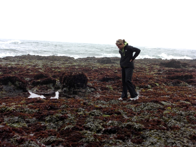 Nan Tidepooling at the FMR