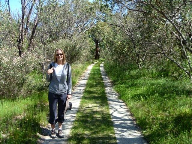 "Walking through ""bushland."""