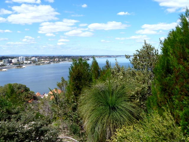 View of Swan River from Kings Park