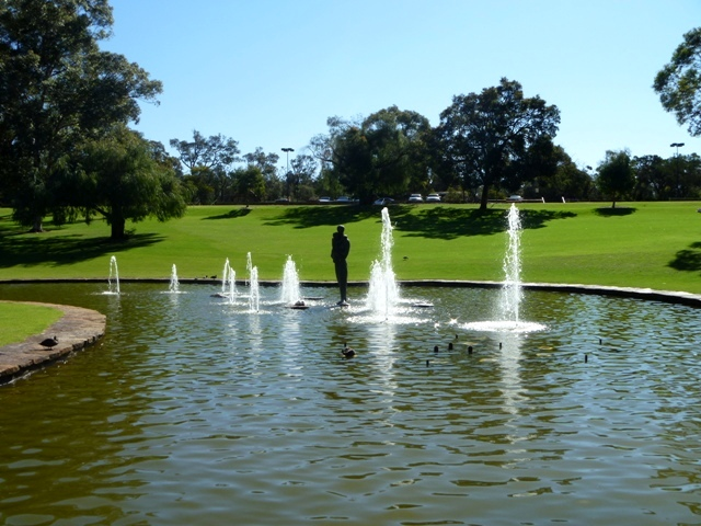 Water fountain, art, and the great lawn in Kings Park