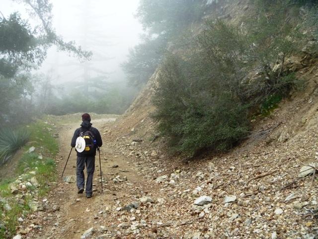 Pushing toward the peak