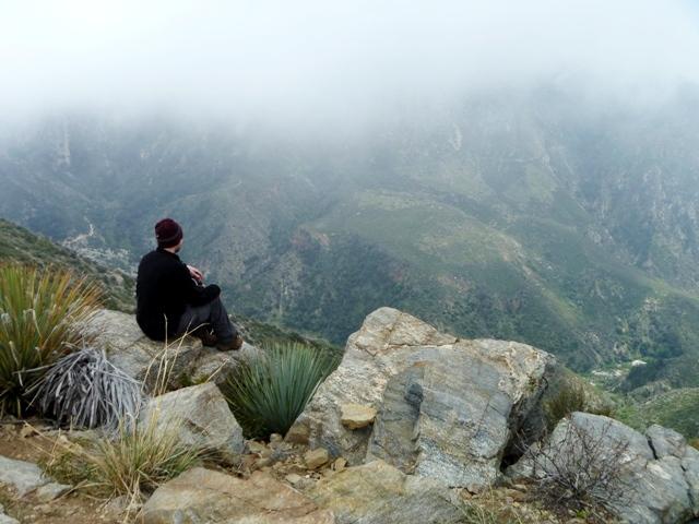 Emmett at the peak
