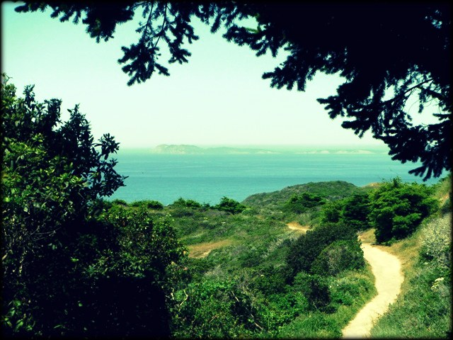 Palomarin Trail
