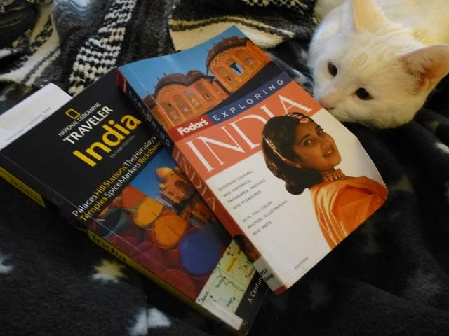 India Trip Research