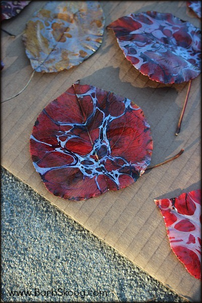 Close up of Marbled Leaves by Barb Skoog