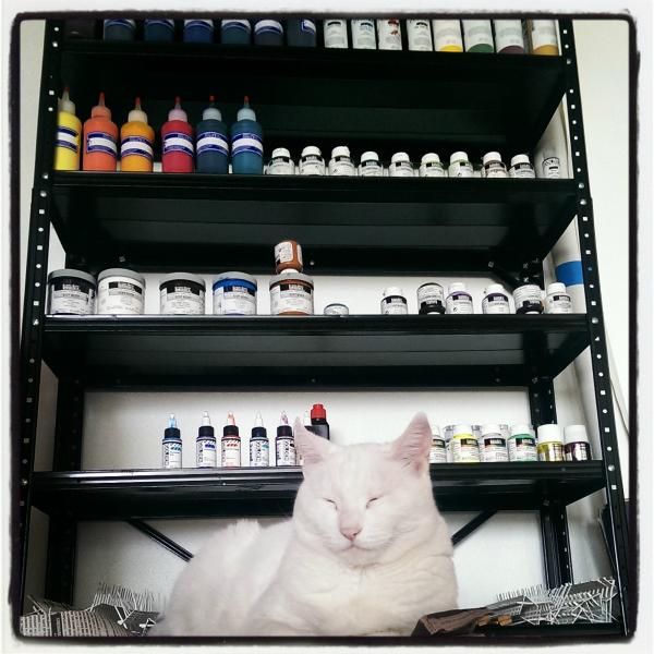 Studio cat in the studio of marbler Barb Skoog