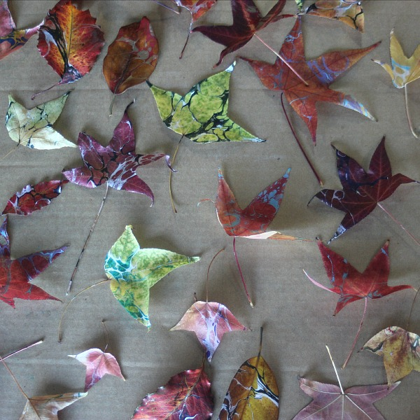Marbled leaves by Ebru artist Barb Skoog,